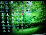 My windows 98