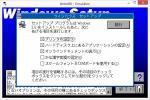 Что сразу бросается в глаза - так это то, что опций при установке 5, а не три, как в обычной версии. Более того, цвет заголовка не обычный серый, как в 3.00/3.00a, а фиолетовый, как в ранних бетах Windows 3.10. А фон программы установки - синий, как в конечных версиях Windows 3.1x, так как в 3.0x он серый, в ранних бетах 3.10 он фиолетовый